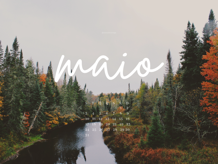 Wallpapers: Maio 2021